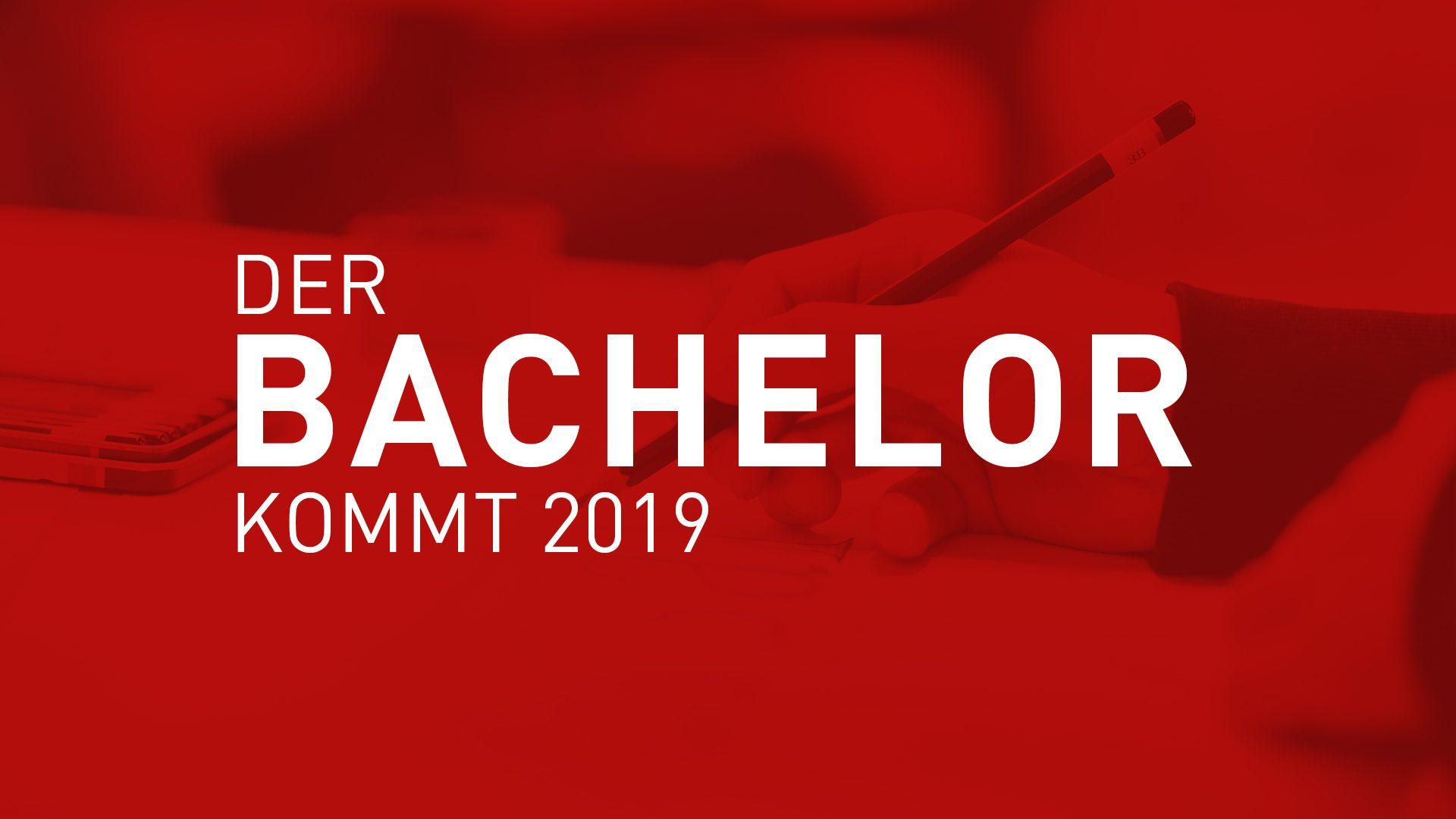 Der Bachelor kommt!